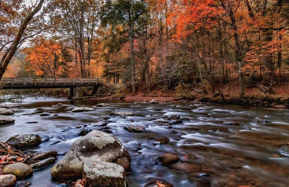 Best Time To Visit the Smoky Mountains For Fall Colors