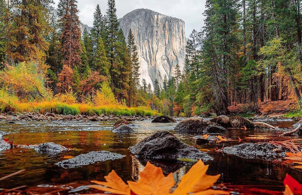 Fall in Sequoia and King Canyon National Park