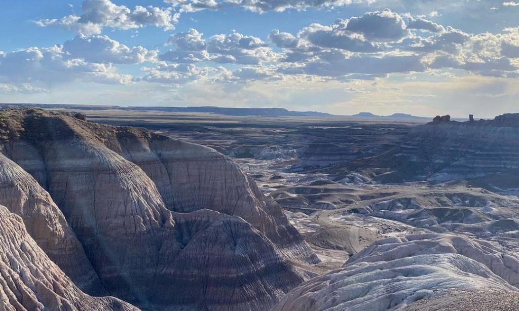 Petrified Forest National Park Desert Camping Spots in Arizona