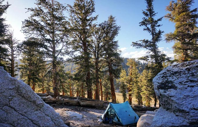 The Best Time to Visit Sequoia National Park for Camping