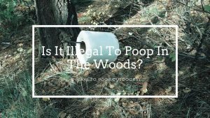 Is It Illegal To Poop In The Woods